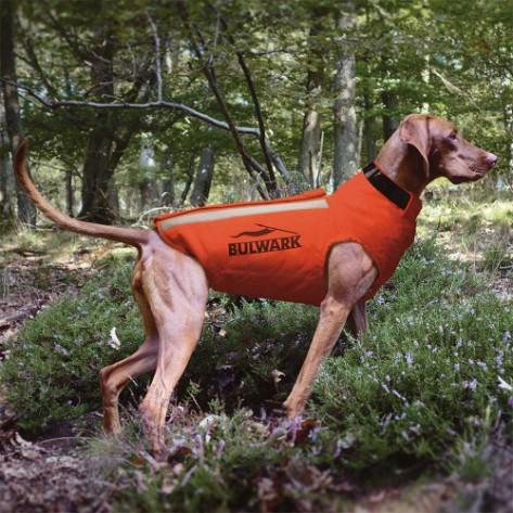 Chaleco de proteccion perros antijabalies