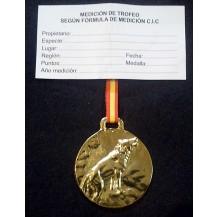 Medalla Trofeo LOBO